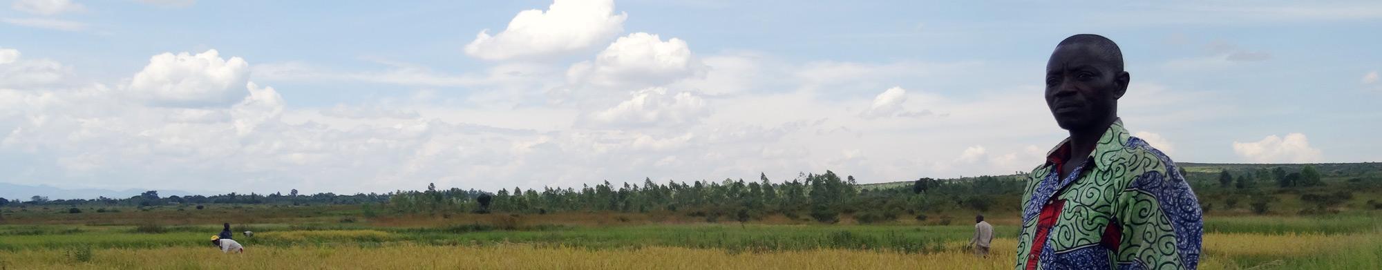 FOPAC SK, Fédération des Organisations des Producteurs Agricoles du Congo au Sud-Kivu