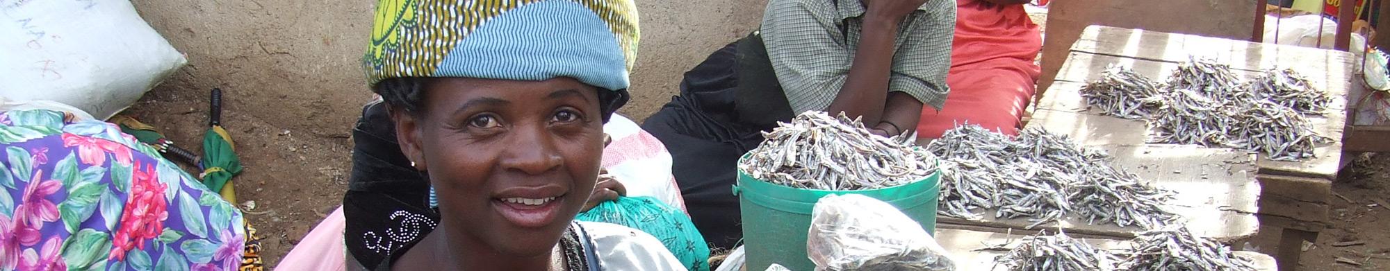 PAIDEK, Promotion et Appui aux Initiatives de Développement Economique du Kivu
