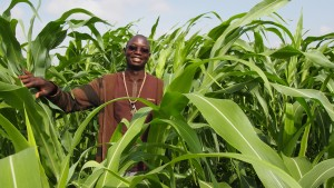 Lunch-débat: vers une aggravation de la situation pour les pays d'Afrique de l'Ouest?