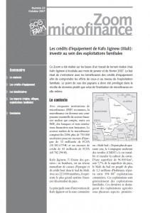 Les crédits d'équipement de Kafo Jiginew (Mali) : investir au sein des exploitations familiales