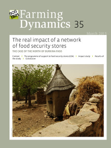 The real impact of a network of food security stores