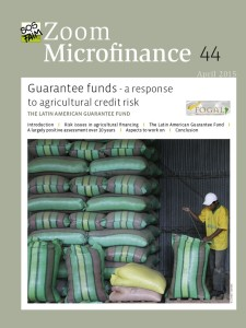 Guarantee funds – a response to agricultural credit risk