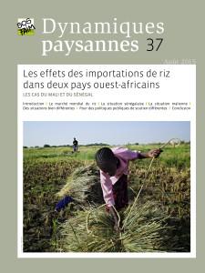 Les effets des importations de riz dans deux pays ouest-africains