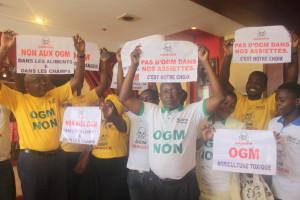 Manifestation contre les OGM au Cameroun