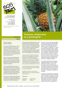 Bénin: de nouvelles perspectives d'avenir pour les petits producteurs d'ananas !