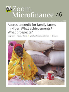 Access to credit for family farms in Niger: What achievements? What prospects?
