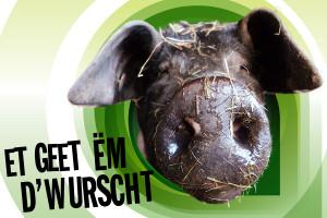 «Et geet ëm d'Wurscht»: Manif fir eng nohalteg Landwirtschaft