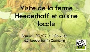 Visite de la ferme Heederhaff et cuisine locale