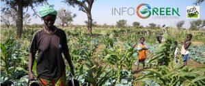 SOS Faim et Infogreen.lu entrent en partenariat!