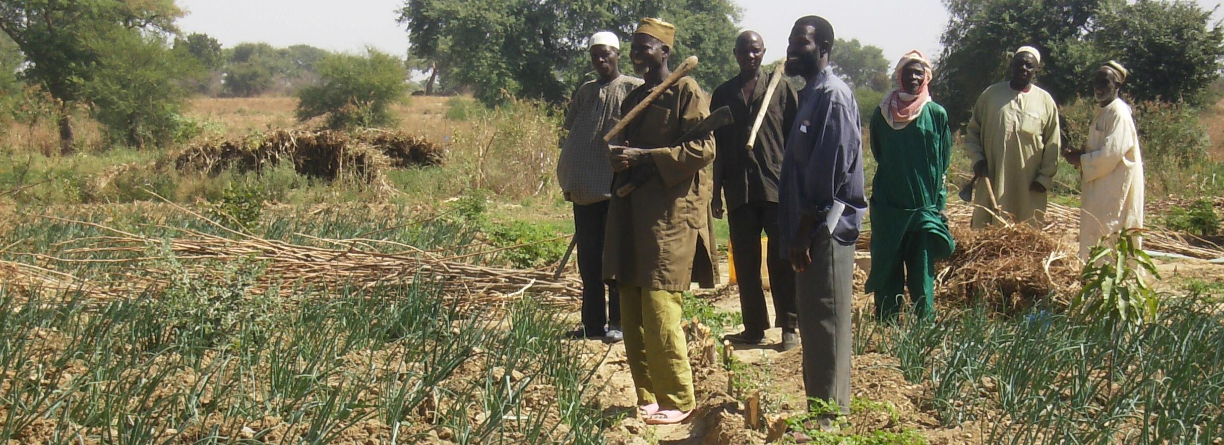 Programme de formation des producteurs en finance agricole