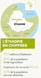 Des nouvelles alarmantes d'Éthiopie !