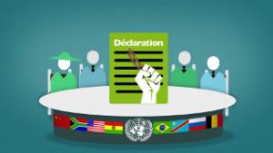 Droit des paysans: pour une déclaration des Nations-Unies!