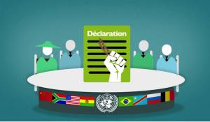 Les Nations Unies offrent une victoire historique aux paysans