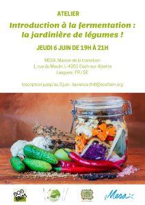 06/06 Introduction à la fermentation : la jardinière de légumes !
