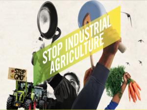 [En campagne] Raise your voice ! Systèmes alimentaires résilients et agroécologie