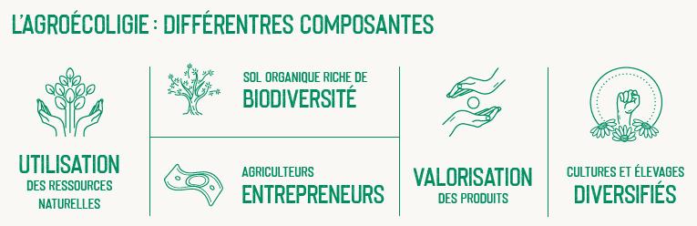L'agroécologie: différentes composantes